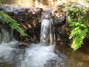 IMG_1507 stream nr. Chisanga